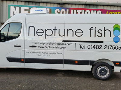 Van Side Graphics (Neptune)