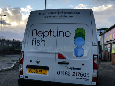 Van Rear Graphics (Neptune)